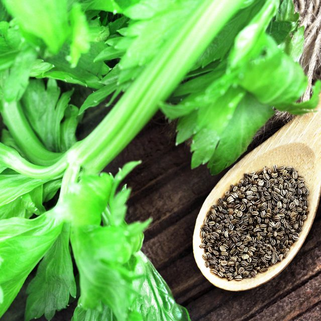 Celery Seed Essential Oil - Range Products