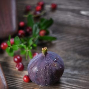 Cranberry Fig Fragrance